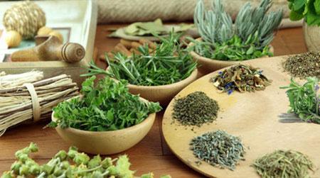 мочегонные растения и травы