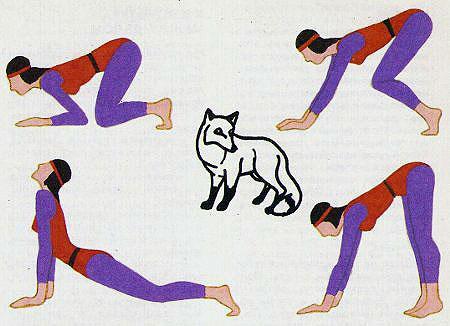 упражнение «Лисица»